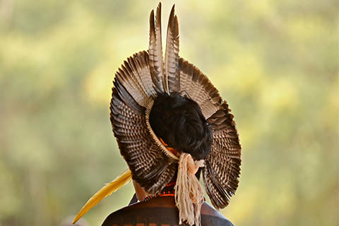 A photo of the headdress of a Pataxo tribe member in Bahia Brazil.
